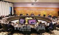 APEC 2017:提升越南在国际舞台上的地位