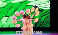 加强在缅甸开展越南文化遗产推介活动