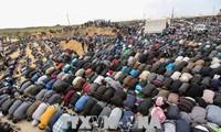 巴勒斯坦:哈马斯呼吁在加沙地带东部举行示威