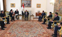 越共中央宣教部部长武文赏对埃及进行工作访问