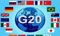 国际贸易组织呼吁二十国集团遏制保护主义