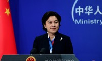 中国对美国国会中期选举作出反应