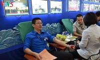 越南之声组织志愿活动响应青年月