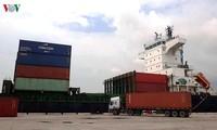 清化省开辟集装箱国际海运航线