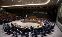 越南提出具体任务 担任好联合国安理会的新职务
