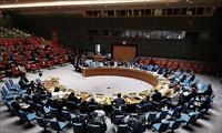 越南与联合国安理会:越南肯定国家威望