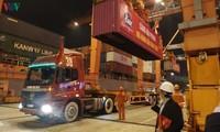 海防港迎来2020年首批货物