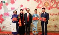 旅居世界各国越南人举行庚子春节迎春活动