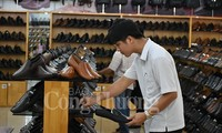 越南皮革鞋类产业2020年力争实现出口额达240亿美元的目标
