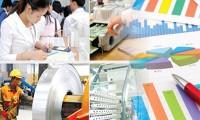 越南强调决心指导和调控国家发展