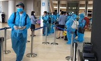 把正在日本的340名越南公民接回国