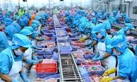 《越欧自贸协定》为越南与欧盟全面合作伙伴关系注入新动力