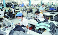 Vietnam prepara capacidad para cumplir los pedidos de la Unión Europea