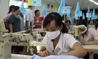 Cơ hội xuất khẩu cho doanh nghiệp Việt Nam