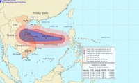Miền Trung sẵn sàng sơ tán dân, chủ động đối phó với cơn bão số 11 (bão Nari)