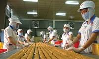 Nâng kim ngạch thương mại Việt Nam – Thái Lan đạt 15 tỷ USD vào năm 2020