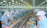 Quốc hội Mỹ thông qua dự luật gây khó khăn cho sản phẩm cá da trơn Việt Nam