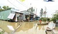 """Triển khai dự án """"Biến đổi khí hậu và cung cấp nước sạch khu vực đồng bằng sông Cửu Long"""""""