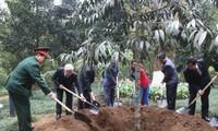 Tổng Bí thư Nguyễn Phú Trọng dâng hương tưởng niệm Chủ tịch HCM và trồng cây lưu niệm tại K9