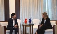 Việt Nam muốn thúc đẩy hơn nữa quan hệ hợp tác nhiều mặt giữa Việt Nam và Liên minh châu Âu (EU)