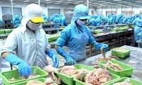 Công bố Sách Trắng về chống khai thác IUU ở Việt Nam