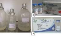 Việt Nam được WHO đặt hàng sản xuất vắc xin cúm mùa