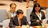 Việt Nam tham gia các phiên họp của Ủy ban Pháp lý và Ủy ban các vấn đề kinh tế và tài chính Đại hội đồng LHQ khóa 73