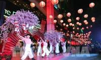 Đặc sắc Ngày hội Văn hóa Việt Nam - Nhật Bản