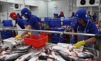 Nông sản Việt tăng sức cạnh tranh trên thị trường thế giới