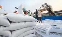 Cơ hội để Việt Nam xuất khẩu gạo vào thị trường Hàn Quốc