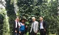 Đề xuất để nông sản Việt Nam có sức cạnh tranh cao, tham gia chuỗi giá trị nông sản toàn cầu