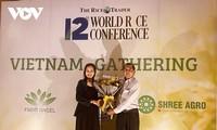 Gạo ST25 đạt giải nhì gạo ngon nhất thế giới 2020