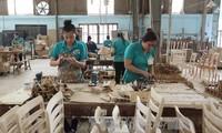 Việt Nam là điểm đến đầu tư cho các doanh nghiệp Canada muốn tiếp cận châu Á