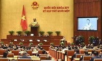 Quốc hội nhiệm kỳ khóa XIV: Nhiều cảm xúc trong tâm tư của đại biểu Quốc hội