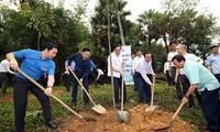 Trồng mới 1.000 cây xanh tại Khu di tích lịch sử Đền Hùng
