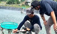 Australia chọn 9 doanh nghiệp nông nghiệp chuyển giao công nghệ vào Việt Nam