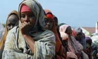 Việt Nam kêu gọi tạo điều kiện cho phụ nữ trong tiến trình chính trị tại Somalia