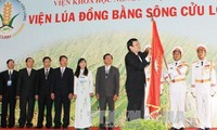 Юго-западные провинции Вьетнама должны найти новые способы повышения конкурентоспособности