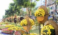 В г.Хошимине проходят новогодние книжный и цветочный фестивали