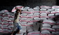 Мировые цены на продовольствие снизились до рекордного уровня за последние 5 лет