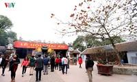 Праздник храма Чан Тхыонг и выдача королевской печати в храме династии Чан