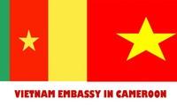 Скоро Вьетнам и Камерун отметят 45-летие установления дипотношений