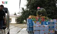 Предоставление продовольствия жителям районов, пострадавших от недавнего тайфуна