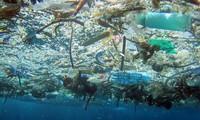 Митинг по случаю Всемирного дня окружающей среды и Недели моря и островов Вьетнама