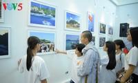 """Выставка """"Чыонгша во мне"""" - любовь к морю и островам"""