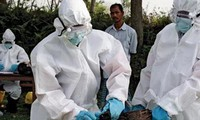 ยังไม่ตรวจพบไวรัสไข้หวัดนกสายพันธุ์ใหม่ H7N9 ในเวียดนาม