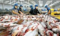 ประชาสัมพันธ์ผลิตภัณฑ์ปลาสวายของเวียดนามในตลาดแอฟริกาใต้