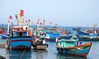 สมาคมผู้ประกอบอาชีพประมงเวียดนามคัดค้านการห้ามจับปลาในเขตทะเลตะวันออก