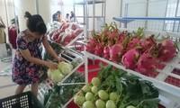 ข้อตกลง EVFTA โอกาสที่ดีเพื่อให้หน่วยงานการเกษตรพัฒนา