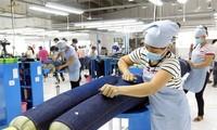 EVFTA  merupakan pemacu penting bagi ekspor tekstil dan produk tekstil